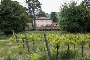 Brighella - Villa Corte